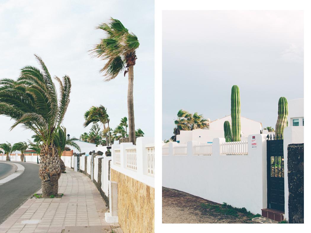 026-Fuerteventura_Urlaub_JuleMueller
