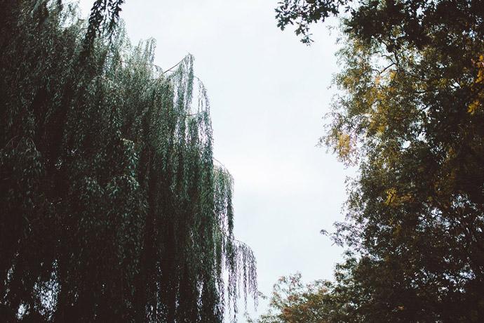 039-imgegenteil_Anna