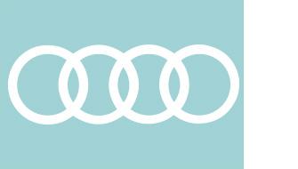 ImGegenteil_Koops_Audi