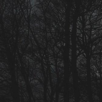 imgegenteil_Nachtfarben