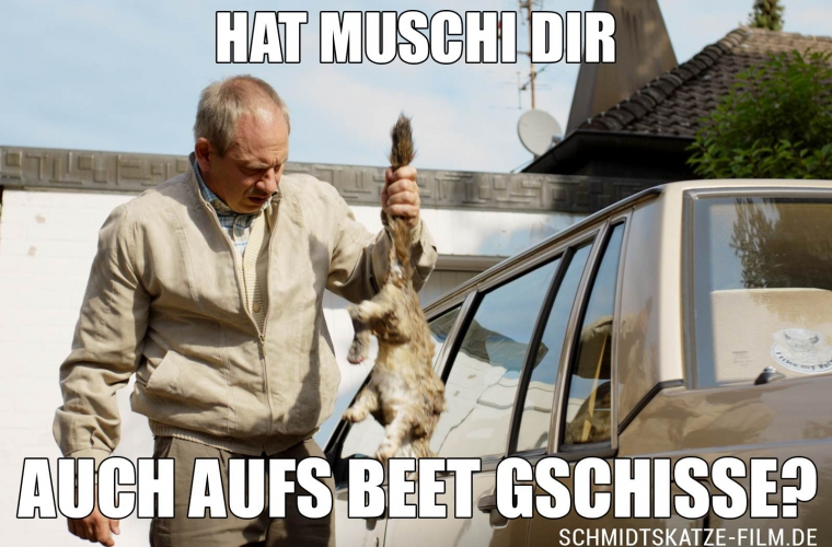 schmidtskatze_meme-beet-760x500