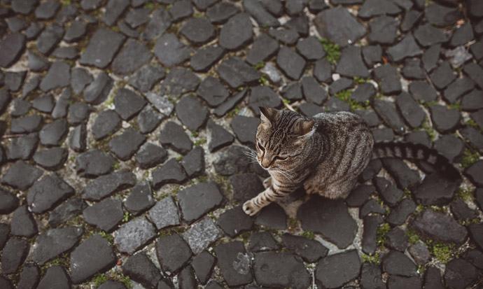 003-imgegenteil_Bock-auf-Reisen_Portugal